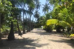 lokální ostrov