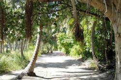 cesta na Maledivách