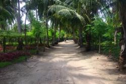 Cesta na pláž