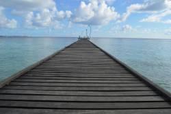 Molo ostrova