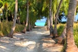 ostrov Thoddoo, Maledivy