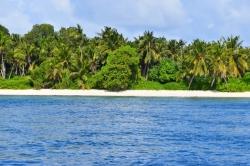 Thoddoo - Maledivy