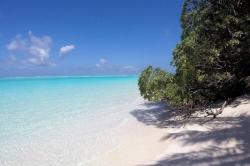 pláž s bílým pískem