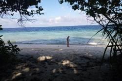 hledání mušlí na pláži