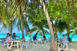 posezení pod palmami u pláže Vashafaru