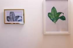 obrázky na stěně